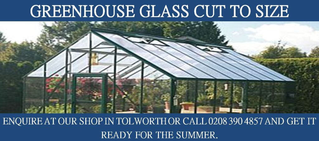An image advertisement for cut to size greenhouse glass by Hamilton Glass Products Ltd